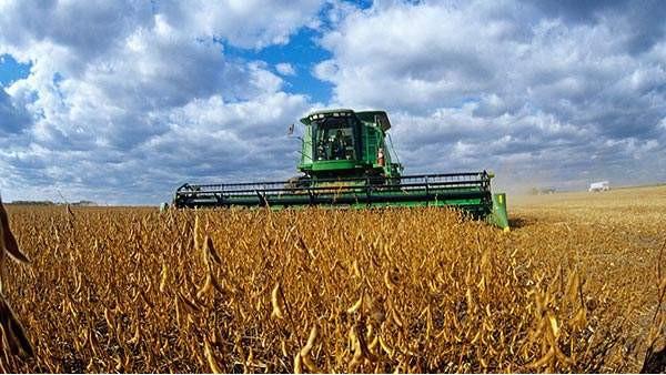 我国欲全面实现大豆产业全面振兴