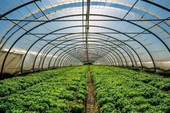 国家发改委:相关部门抓好秋冬农业生产