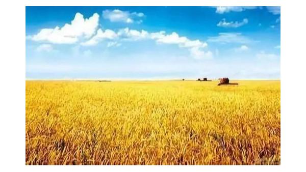 农业农村部发布全国农业社会化服务典型案例