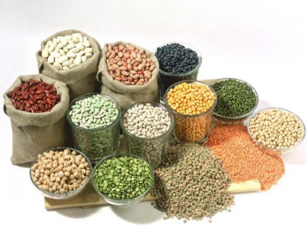 金威玛农产品,打造健康的豆类加工品牌