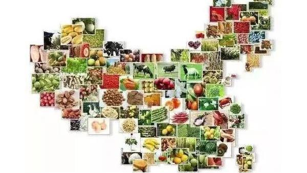 中国国际农交会陕西展团签约超17亿元
