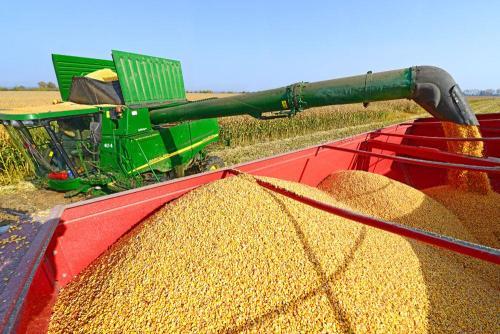 农业农村部:确保粮食产量稳定在1.3万亿斤以上