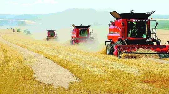 新疆农业部门统一小麦收割,确保夏粮归仓