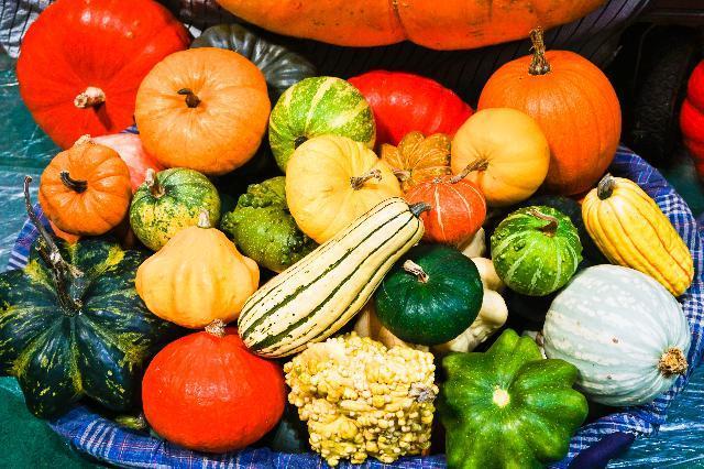 确保春节重要农产品供应价格稳定