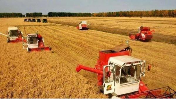 明年粮食产量将保持在1.3万亿斤以上