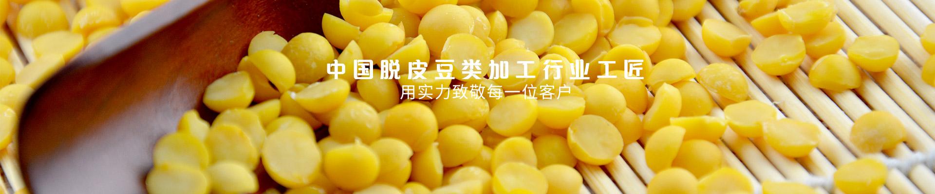金威玛 中国脱皮豆类加工行业工匠