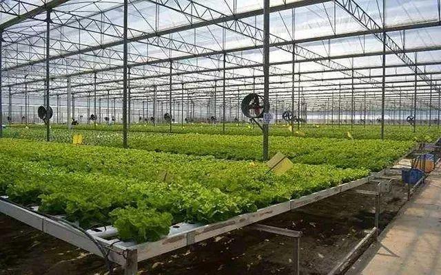 农业数字化转型具备源源不断的创新活力