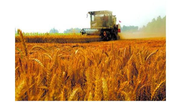 农业机械化在现代农业进程中发挥重要作用