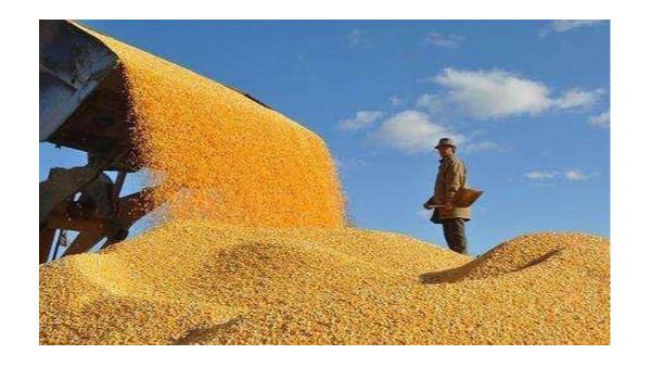 俄大规模对华出口大豆,豆油供应更有保障