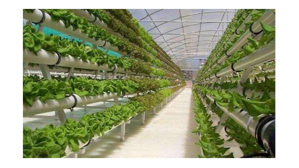 现代农业发展数字化,向智慧农业升级