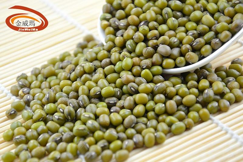 绿豆的品类只有一种吗?