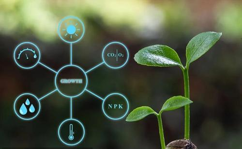 2020世界数字农业大会:探索农业发展新路径