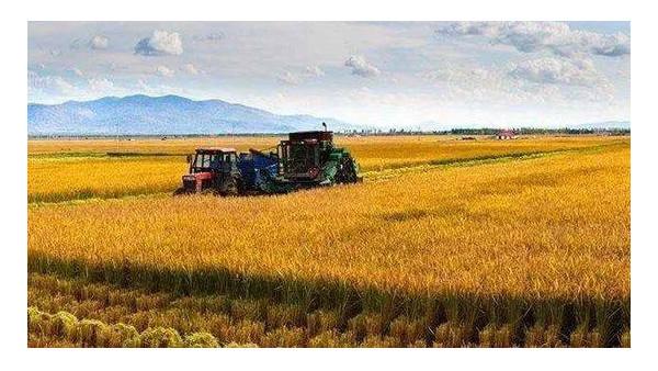 当前农业农村经济形势总体较好