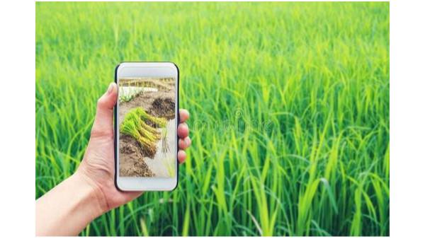 中国互联网农业发展高峰论坛在西安召开