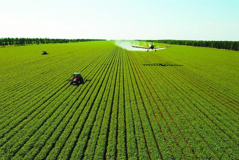 农业农村部:开展春季农作物种子市场检查
