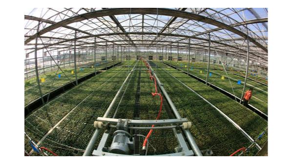 """""""十三五""""以来,农业科技进步与综合机械化显著提升"""