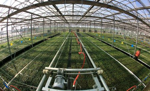 """""""十三五""""以来,农业科技进步与农作物耕种收综合机械化显著提升"""