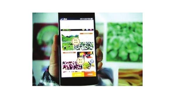 农业农村部规划至2025年农产品网络销售额达1万亿元