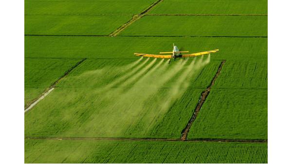 农业农村部:将启动保护种业知识产权专项整治行动