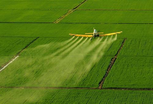 农业农村部:防控重大病虫害,控制危害损失