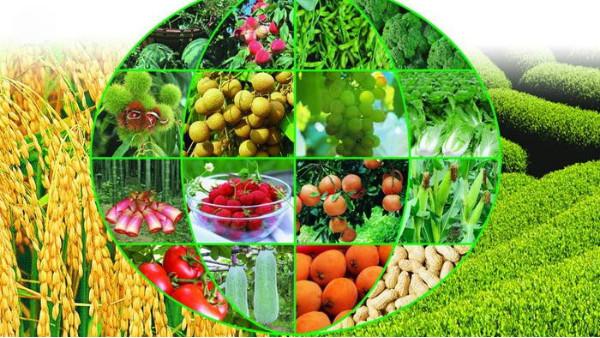 东盟博览会开幕,促进中国与东盟国家农业领域的交流与合作