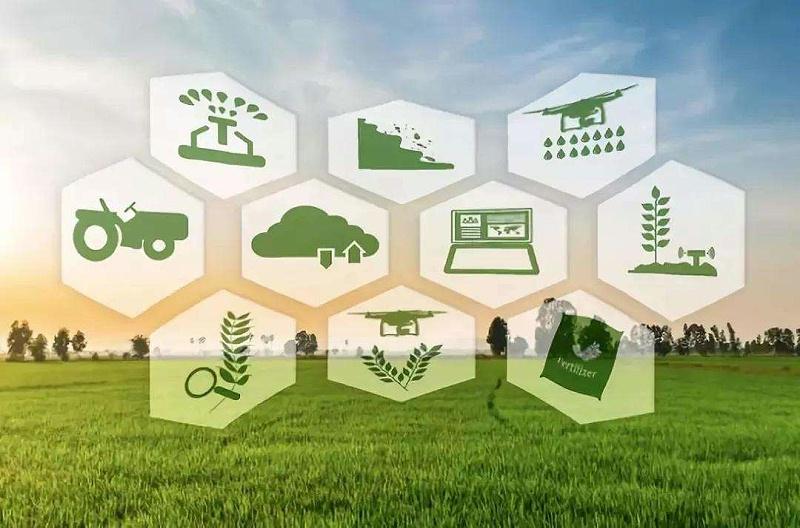 数字农业50人论坛,各企业在数字农业出新招