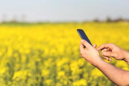 """智慧农业是物联网技术在现代农业领域的应用,用传感器和软件通过移动平台或者电脑平台对农业生产进行控制,使传统农业更具有""""智慧""""。除了精准感知、控制与决策管理外,从广泛意义上讲,智慧农业还包括农业电子商务、食品溯源防伪、农业休闲旅游、农业信息服务等方面的内容。"""