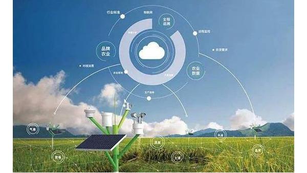 智慧农业大数据平台正式上线,可为生产提供强大数据支持