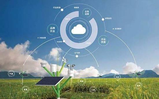 智慧农业大数据平台正式上线,可为农业生产提供强大数据支持。