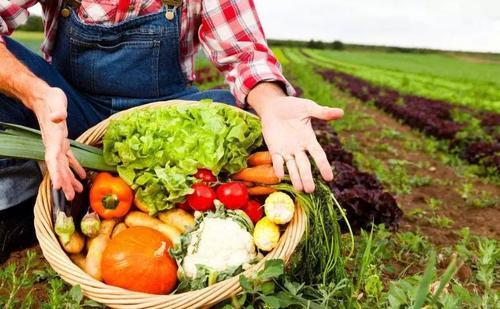 农业农村部展开全国食用农产品合格证制度试行