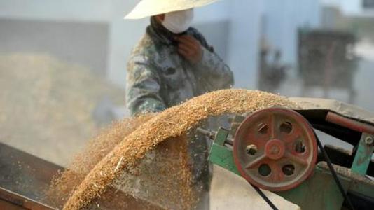 我国粮食产后损失严重,节粮护理空间巨大