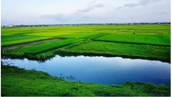 农业农村部:加强对长江水生资源保护