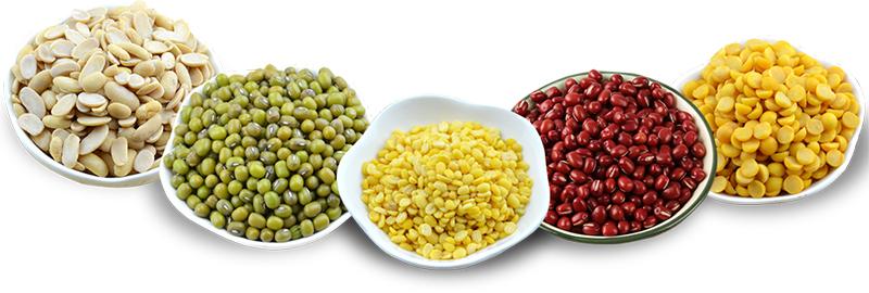 金威玛豆业
