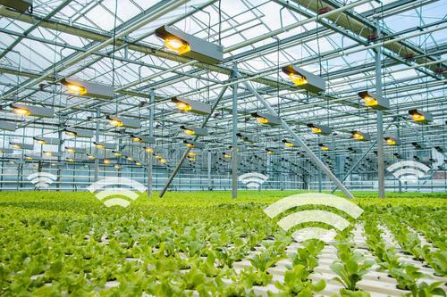 快速发展的年轻人互联网+农业