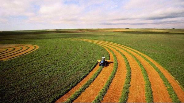 农业农村部:深入灾区开展巡回指导,减轻灾害损失