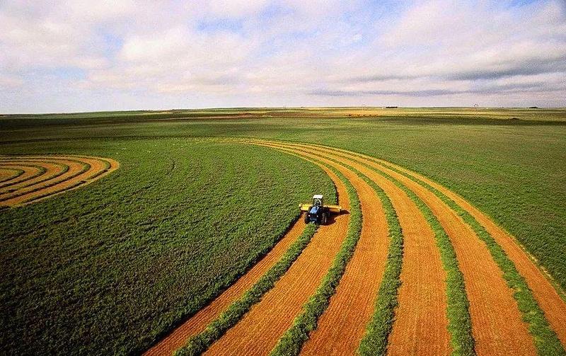 农业现代化进程加快,农村改革深化