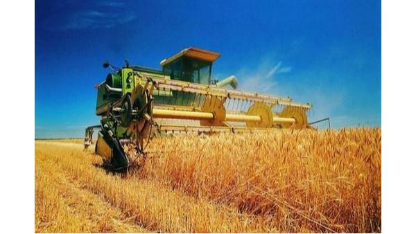 农业农村部:夏粮将大面积收获