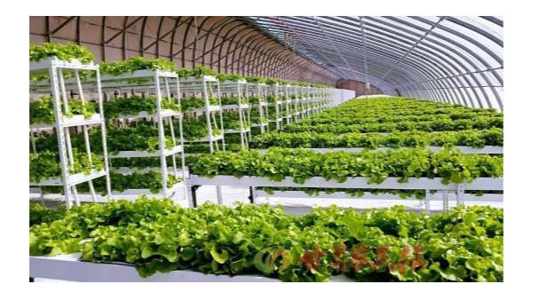 云南数字农业服务平台建设发布会在昆明举行