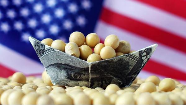 谁能替代美国大豆?