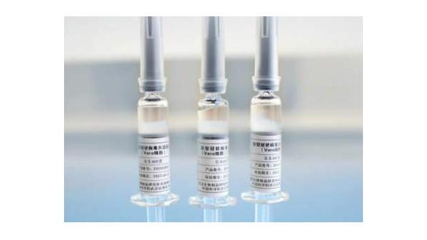 新冠灭活疫苗Ⅰ/Ⅱ期临床研究进展良好