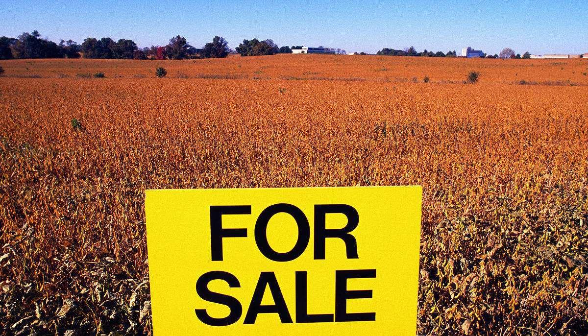 进口农产品会对我国农业产生冲击?