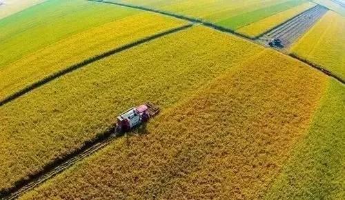 第四届海外农业研究大会在京召开,探讨新形势下的海外农业