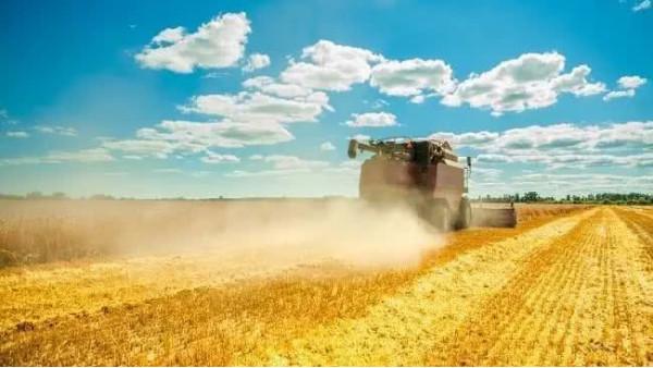 中国农业技术助力非洲农业发展