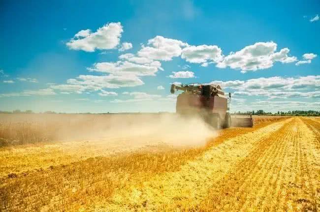 第五届中阿博览会现代农业合作大会在宁夏开幕
