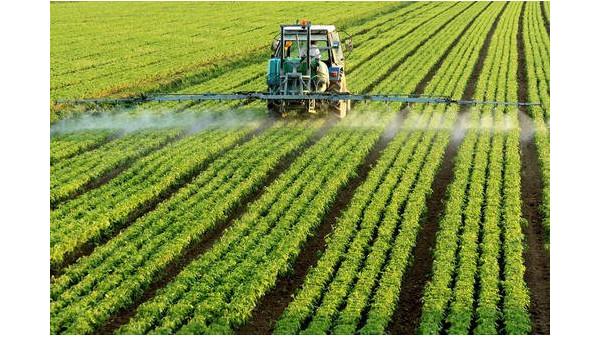 专家称疫情应推动全球农业转型