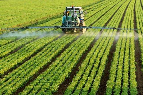专家认为疫情应推动全球农业转型