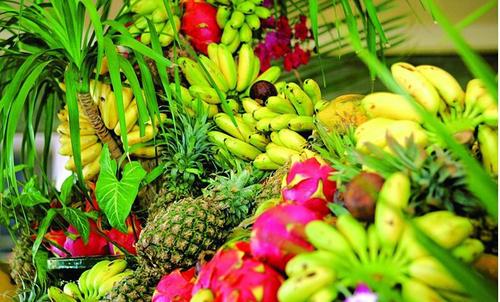 第二十三届中国农产品加工投洽会将于驻马店开幕