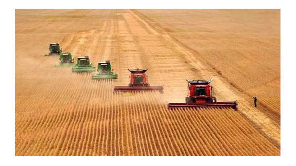 农村农业部:加强永久基本农田保护